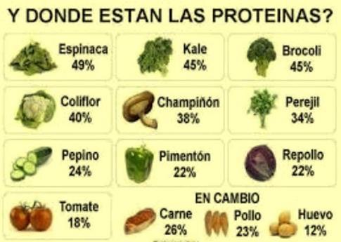 proteinas en vegetales