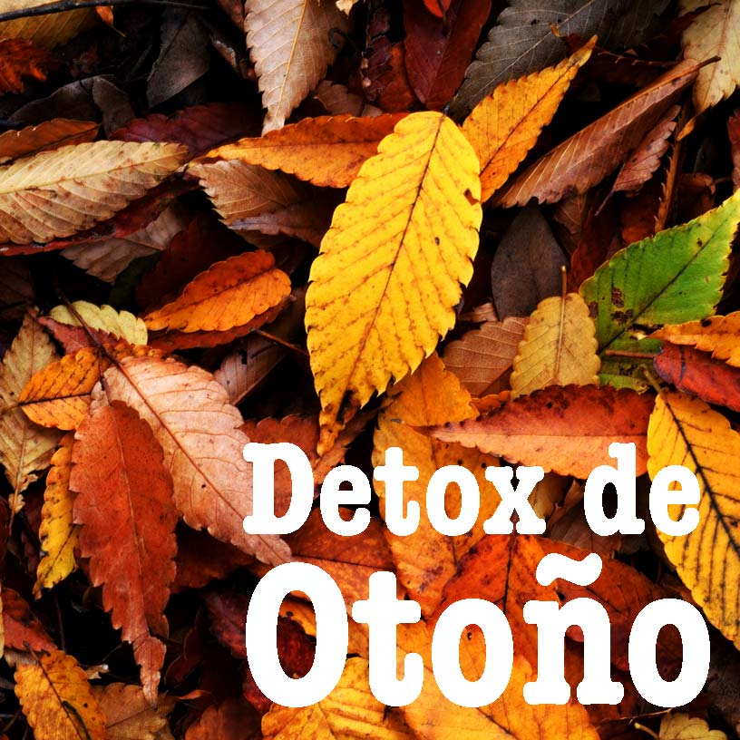 detox-de-otoño