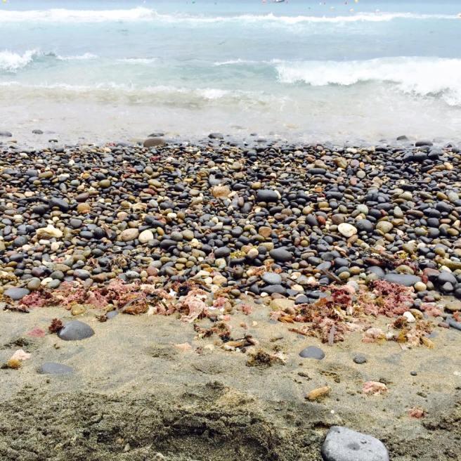 playa_vacaciones